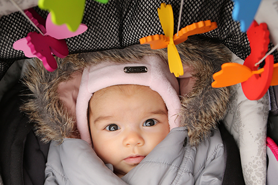 entwicklung baby was kann dein baby sehen 4 6 monate baby eye babyb cher. Black Bedroom Furniture Sets. Home Design Ideas